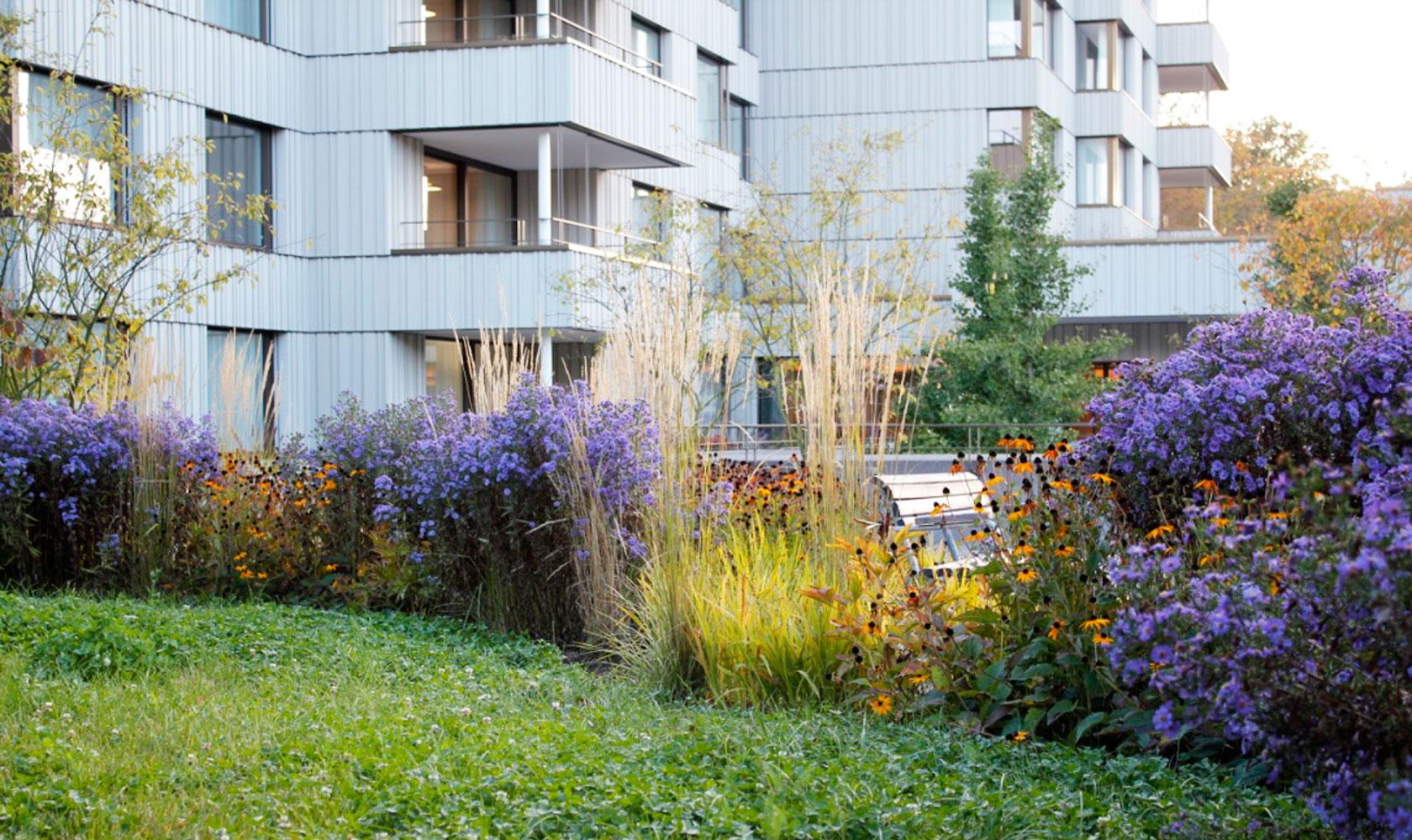 http://hmla.ch/soziale-einrichtungen/pflegezentrum-witikon/